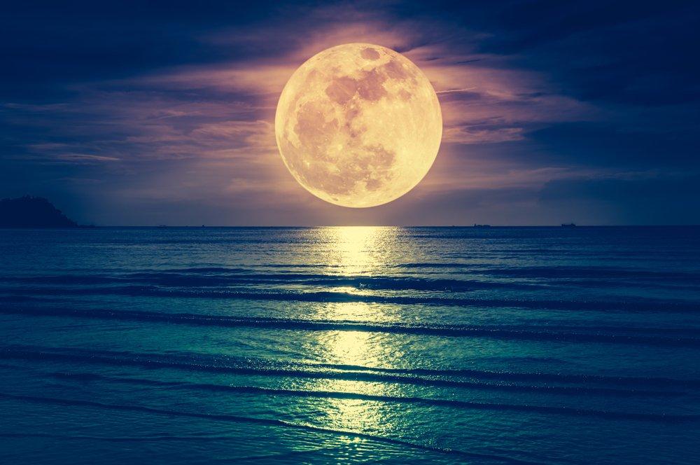 Un paysage montrant la mer avec une magnifique pleine lune. | Source : Shutterstock