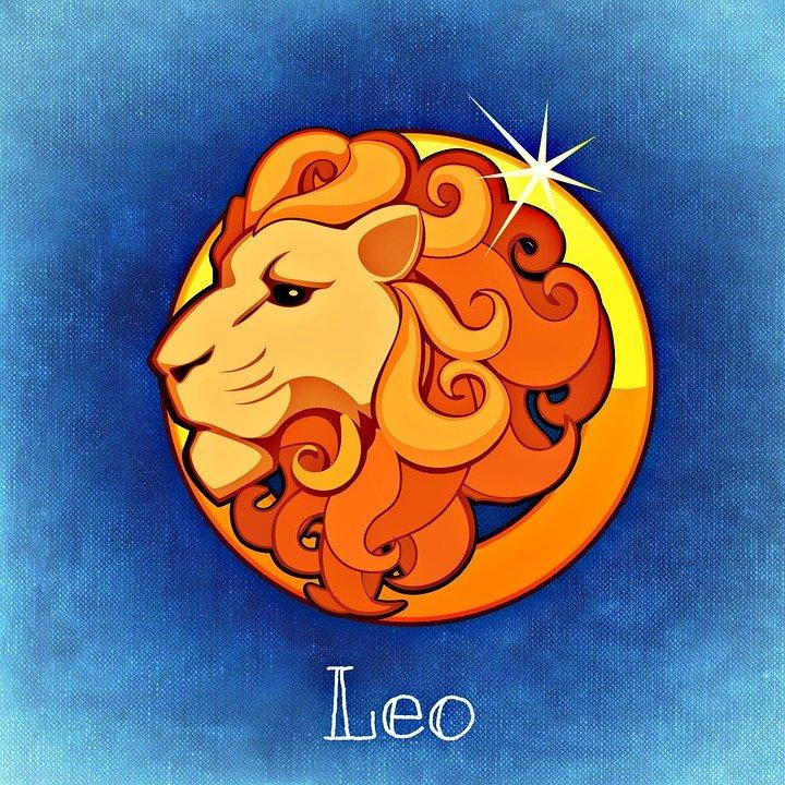 Le signe du Lion. | Photo : Pixabay