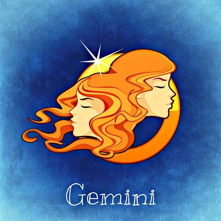 Le signe du Gémaux. | Photo : Pixabay